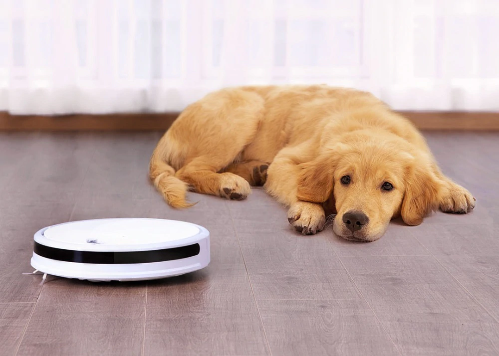 Buy the economical and cheap robot vacuum cleaner Xiaomi Xiaowa Vacuum Lite at the best price. Xiaomi Addicted News