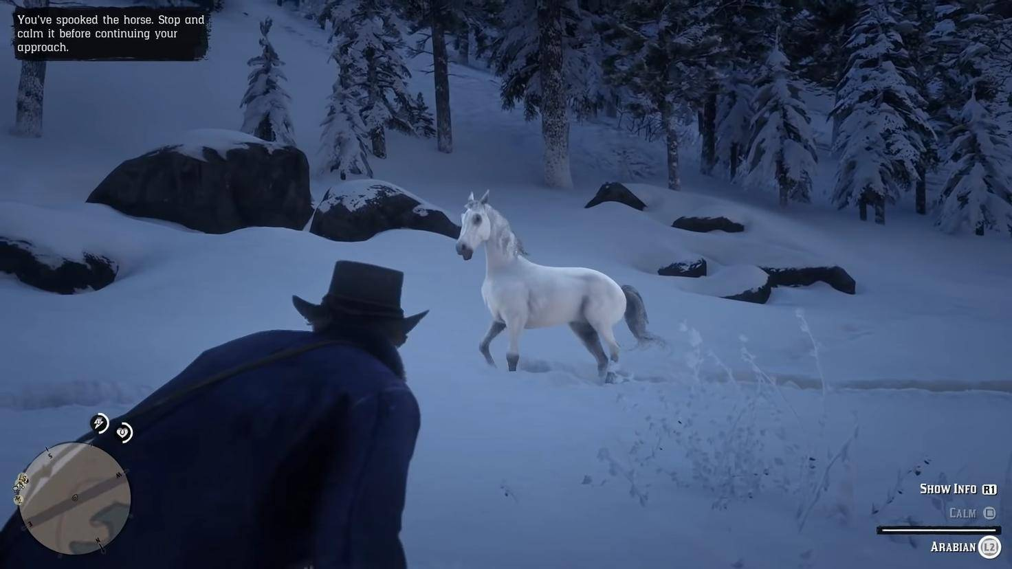 red-dead-redemption-2-white-arab-tame