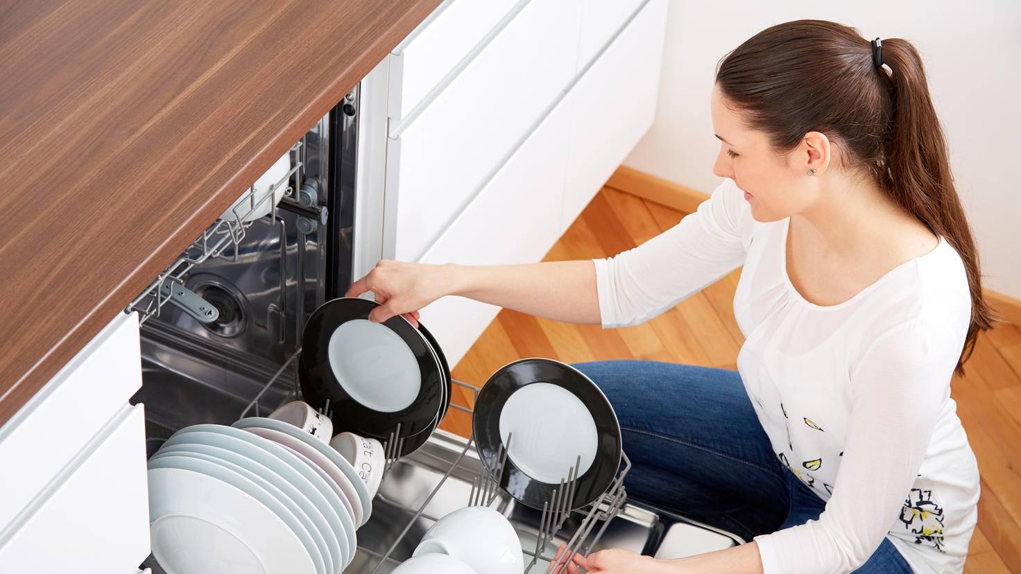 kitchen dishwasher woman